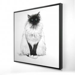 Framed 24 x 24 - 3D - Blue eyes fluffy siamese cat