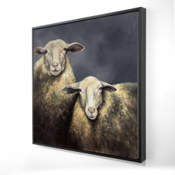 Framed 24 x 24 - 3D - Two sheeps
