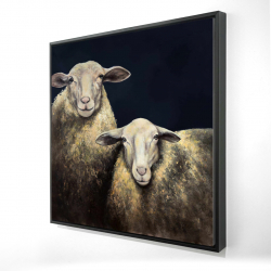 Framed 24 x 24 - 3D - Two sheep blue background