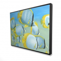 Framed 36 x 48 - 3D - Butterfly fishes
