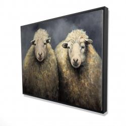 Framed 36 x 48 - 3D - Wool sheeps