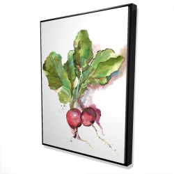 Framed 36 x 48 - 3D - Watercolor radish