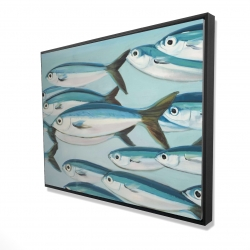 Framed 36 x 48 - 3D - Small fish of caesio caerulaurea