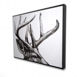 Framed 36 x 48 - 3D - Roe deer plume