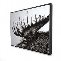 Framed 36 x 48 - 3D - Moose plume