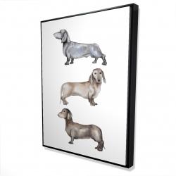 Framed 36 x 48 - 3D - Small dachshund dog