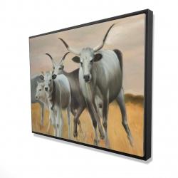 Framed 36 x 48 - 3D - Nguni breeding