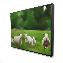 Framed 36 x 48 - 3D - Fields of sheep