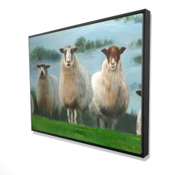 Framed 36 x 48 - 3D - Flock of sheep