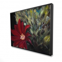 Framed 36 x 48 - 3D - Echinopsis red cactus flower