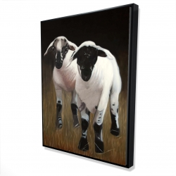 Framed 36 x 48 - 3D - Two lambs