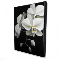 Framed 36 x 48 - 3D - White orchids