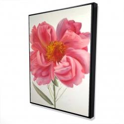 Framed 36 x 48 - 3D - Pink peony flower