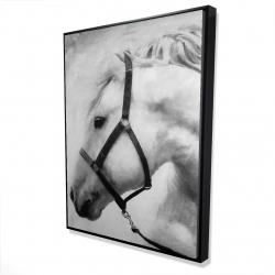 Framed 36 x 48 - 3D - Darius the horse