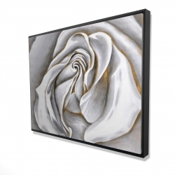 Framed 36 x 48 - 3D - White rose delicate