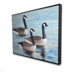 Framed 36 x 48 - 3D - Canada geese in water