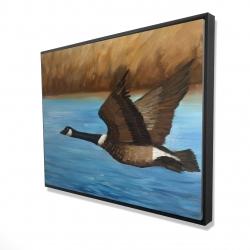 Framed 36 x 48 - 3D - Canada goose