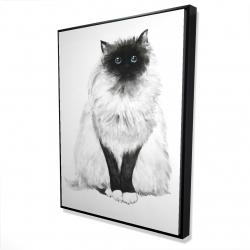 Framed 36 x 48 - 3D - Blue eyes fluffy siamese cat