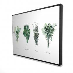 Framed 36 x 48 - 3D - Fine herbs
