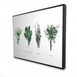 Framed 36 x 48 - 3D - Fines herbes
