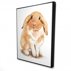 Framed 36 x 48 - 3D - Lop-rabbit