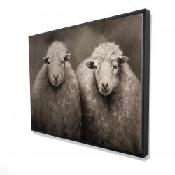 Framed 36 x 48 - 3D - Sheep sepia