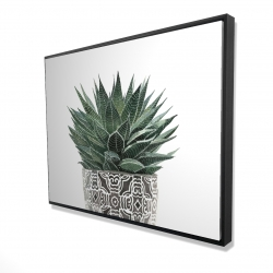 Framed 36 x 48 - 3D - Zebra plant succulent
