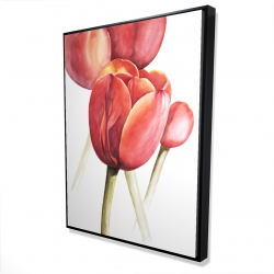 Framed 36 x 48 - 3D - Blossoming tulips closeup