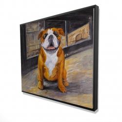 Framed 48 x 60 - 3D - Smiling bulldog