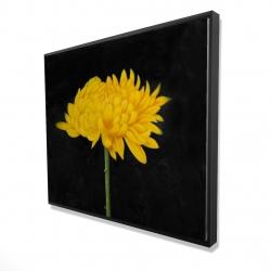 Framed 48 x 60 - 3D - Chrysanthemum