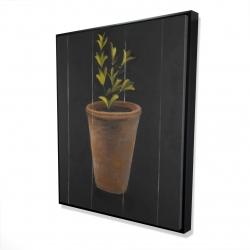 Framed 48 x 60 - 3D - Plant of marjolaine