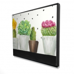 Framed 48 x 60 - 3D - Mini cactus and succulents