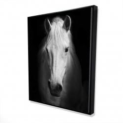 Framed 48 x 60 - 3D - Monochrome horse