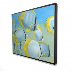 Framed 48 x 60 - 3D - Butterfly fishes