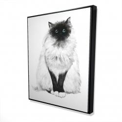 Framed 48 x 60 - 3D - Blue eyes fluffy siamese cat