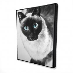Framed 48 x 60 - 3D - Blue eyes siamese cat