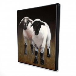 Framed 48 x 60 - 3D - Two lambs