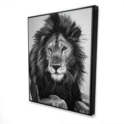 Framed 48 x 60 - 3D - The lion king