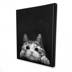 Framed 48 x 60 - 3D - Curious cat