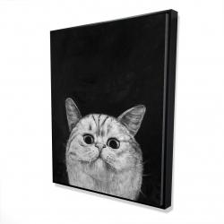 Framed 48 x 60 - 3D - Watching cat