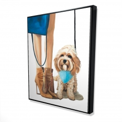 Framed 48 x 60 - 3D - Fashionable cavoodle dog