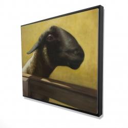 Framed 48 x 60 - 3D - Young ram