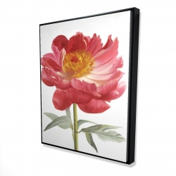 Framed 48 x 60 - 3D - Pink peony