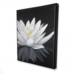 Framed 48 x 60 - 3D - Lotus flower with reflection