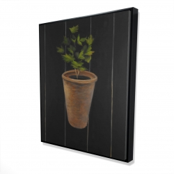 Framed 48 x 60 - 3D - Plant of parsley