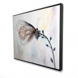 Framed 48 x 60 - 3D - Butterfly on blue flowers