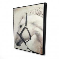 Framed 48 x 60 - 3D - Darius the white horse