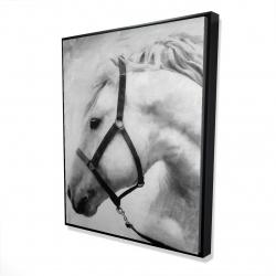 Framed 48 x 60 - 3D - Darius the horse