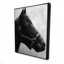 Framed 48 x 60 - 3D - Gallopin the horse