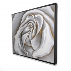 Framed 48 x 60 - 3D - White rose delicate